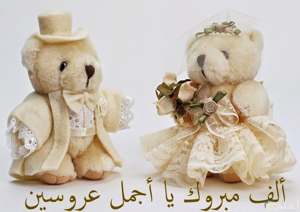 عبارة تهنئة للعروسين جميلة مع دبدوبين بملابس الزفاف