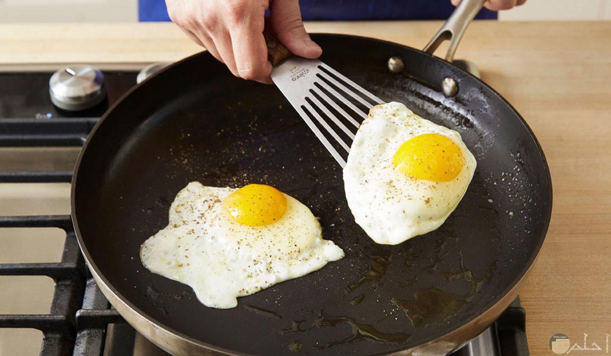 طاسة بيض