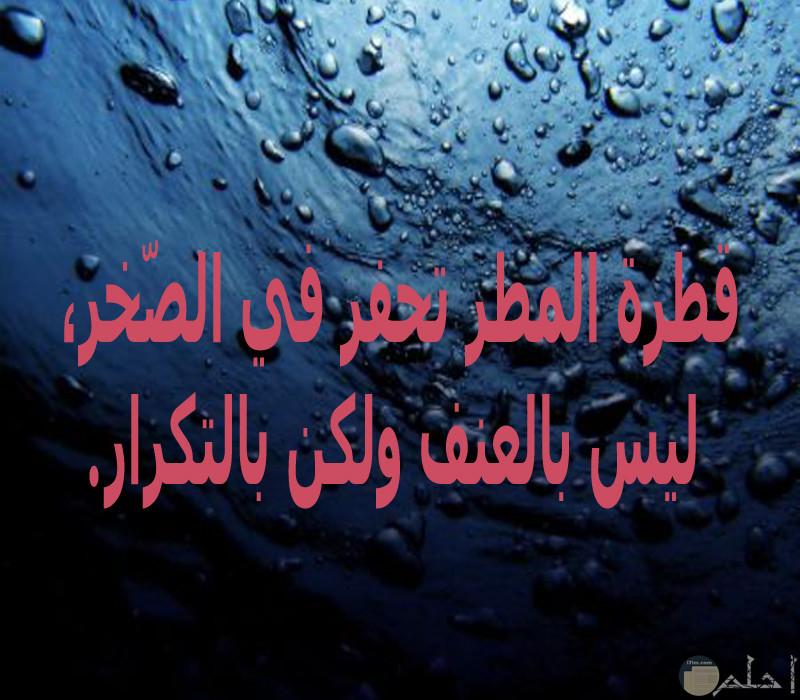 قطرة المطر تحفر في الصّخر، ليس بالعنف ولكن بالتكرار.
