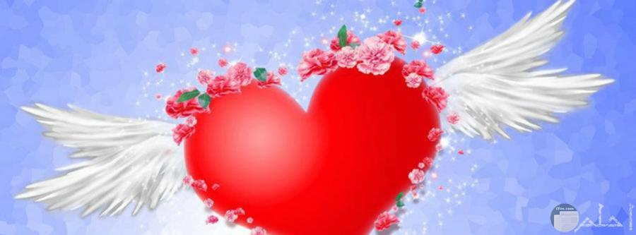 قلب أحمر لغلاف حب
