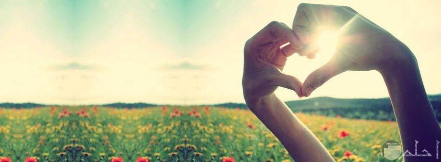قلب رمز الحب