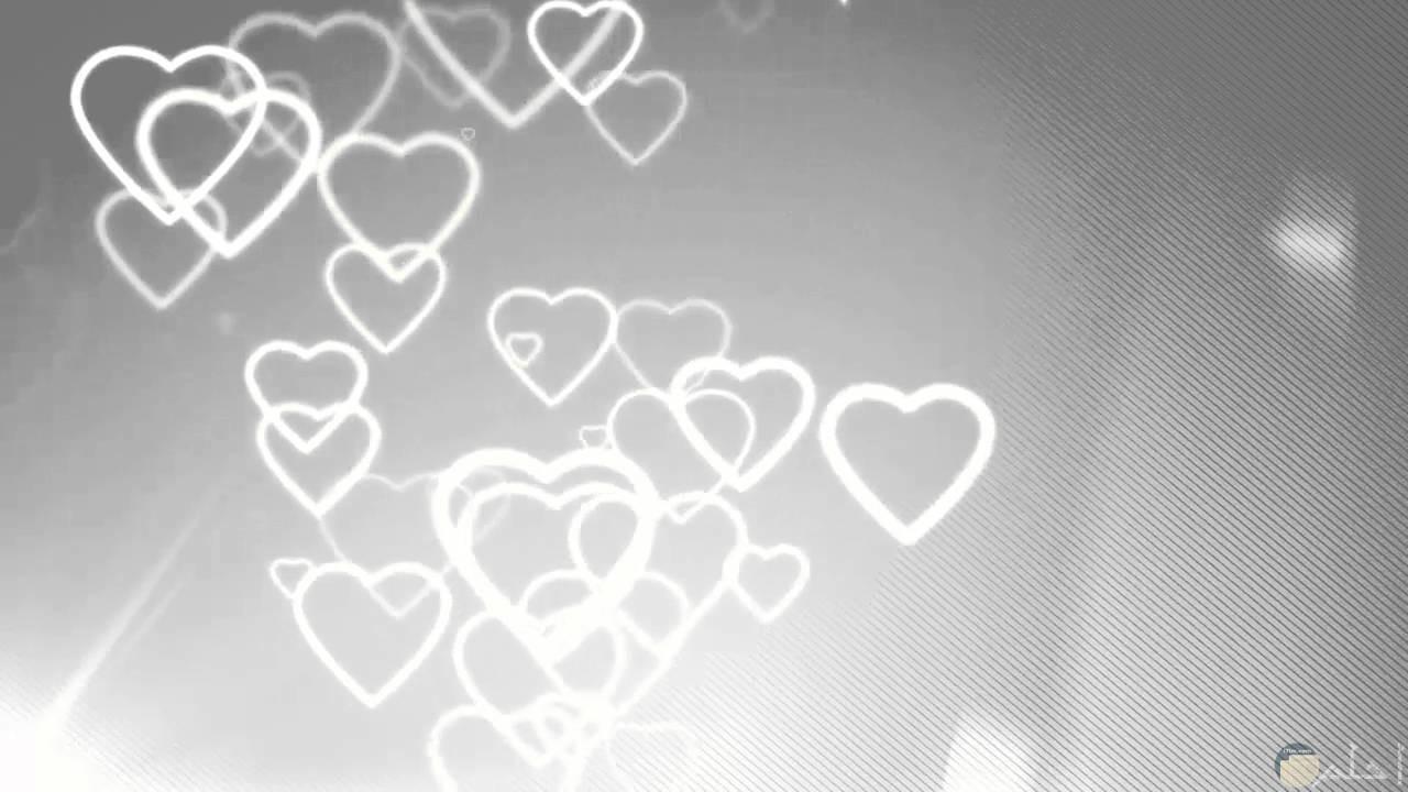 قلوب بيضاء لامعة