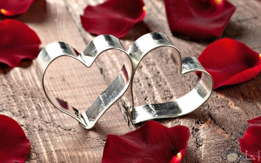 قلوب فضية مع زهور حمراء رومانسية