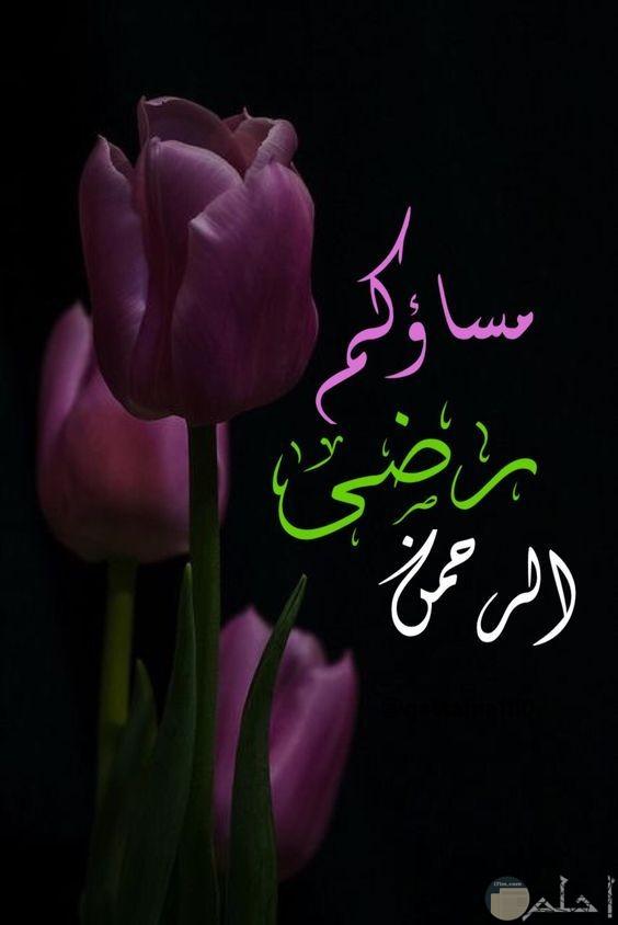مساء رضىا الرحمن