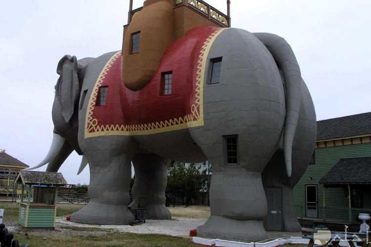 منزل على شكل فيل مصمم على الطراز الحديث