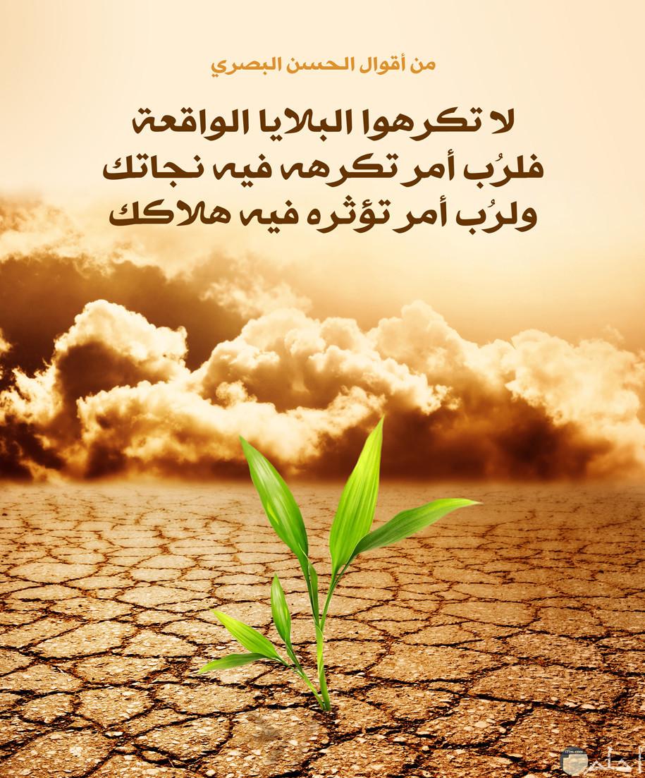 صورة مدونه بمقولة دينية للحسن البصري