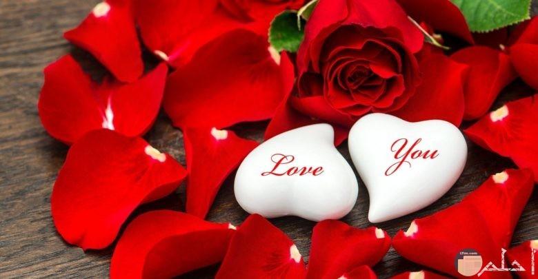 صورة قلبين وورد احمر