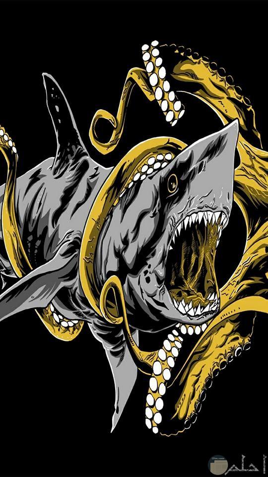 صور مرعبة لسمك القرش المتوحش