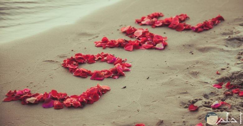صورة مدونه بكلمة بحبك