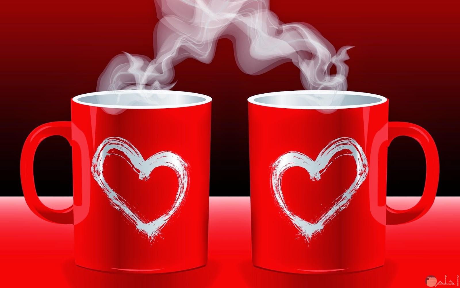 قلوب بيضاء 2
