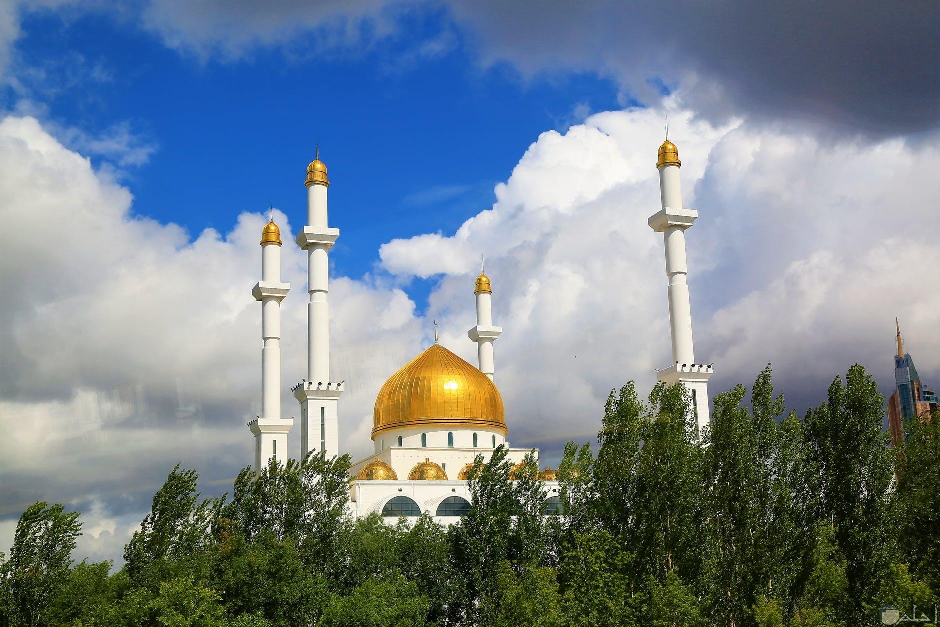 صورة لمسجد وسط الاشجار