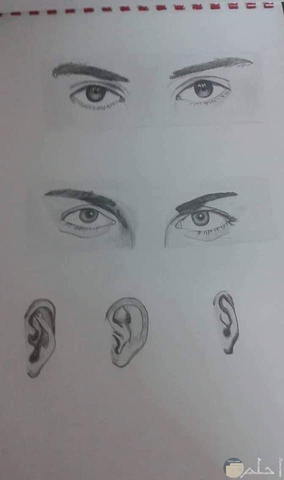 صور رسومات لعيون رجل وأذن