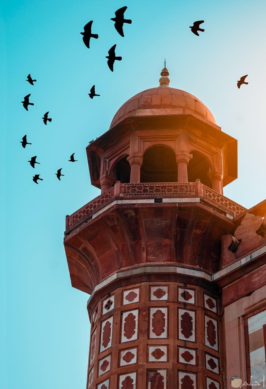 صورة مميزة لمسجد يحلق فوقة طيور