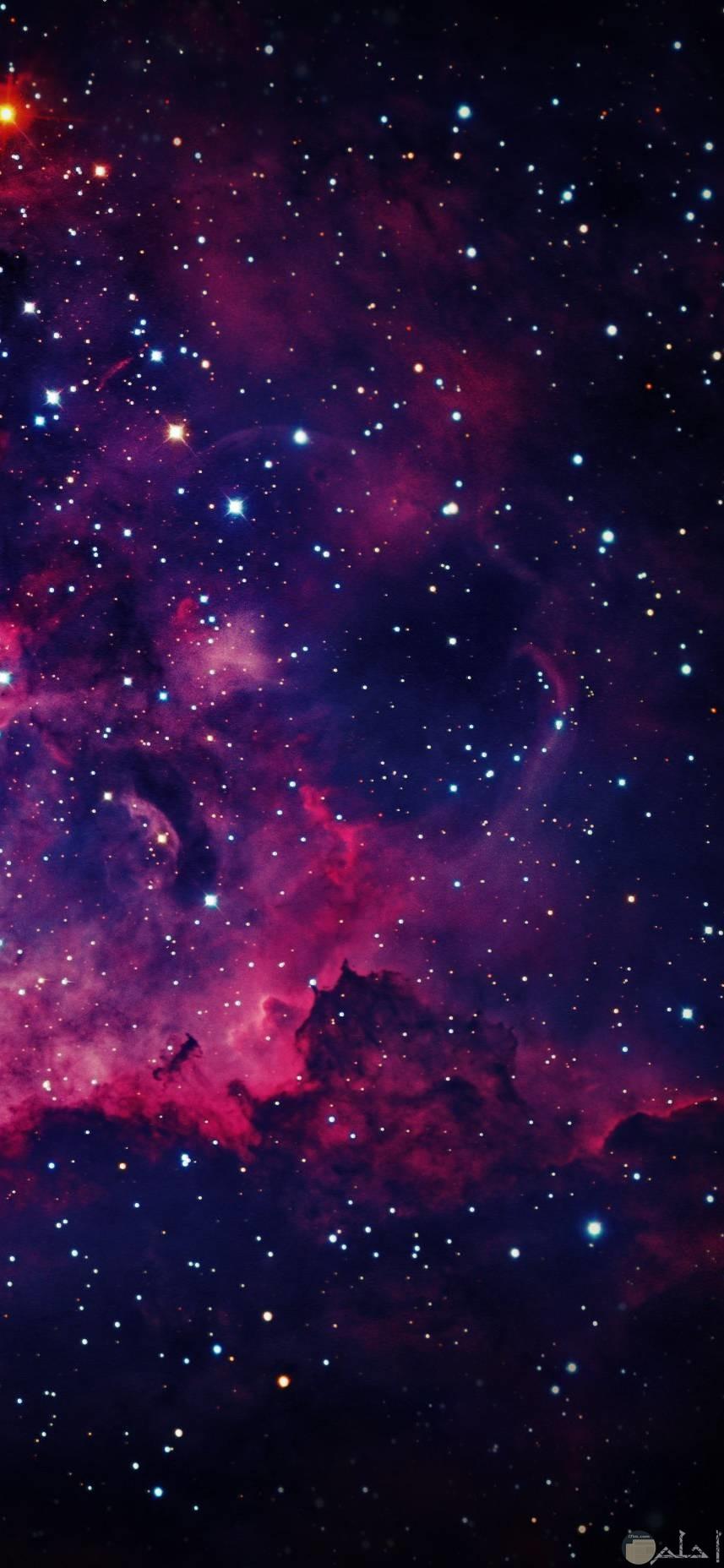صور عميقة مميزة تظهر جمال النجوم