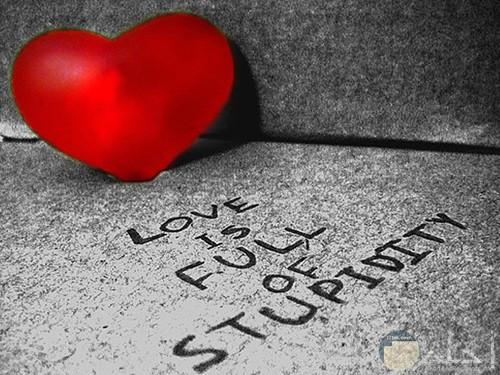 قلب احمر 5