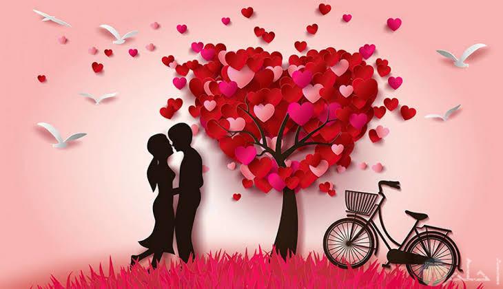 صور عشق وغرام