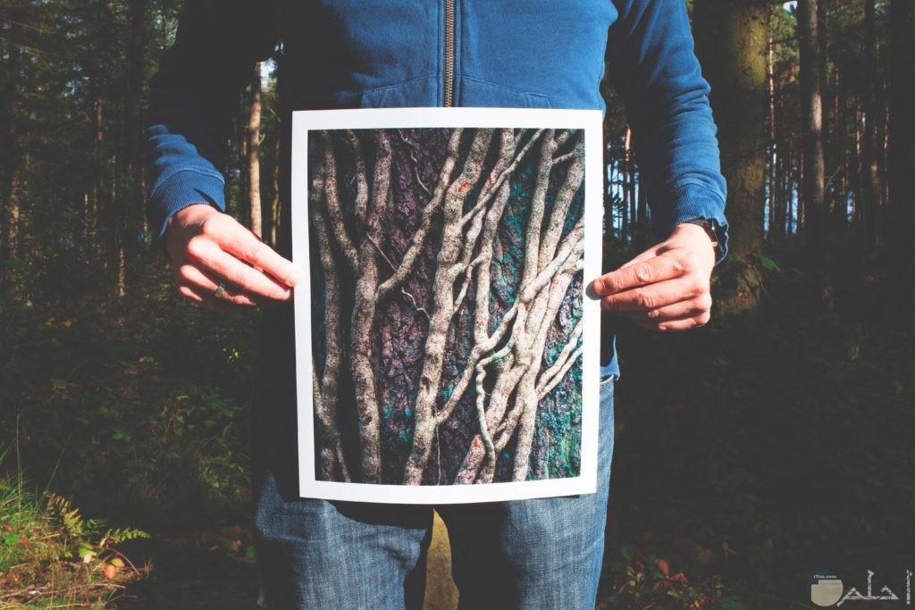 صورة غريبة لشاب يحمل لوحة بها جزوع فقط للشجر
