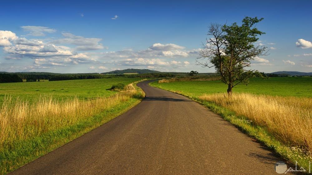 صور هادئة تظهر جمال الريف