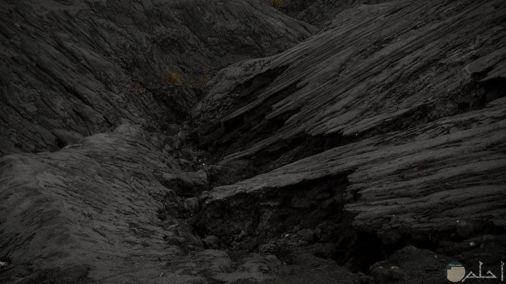 صور سوداء من جمال الطبيعة