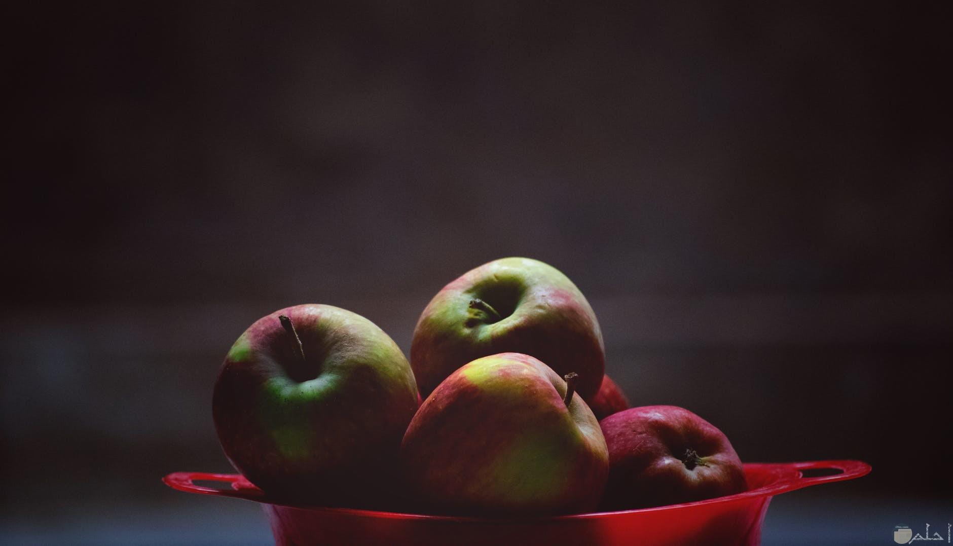 مجموعة من التفاح في طبق تقديم