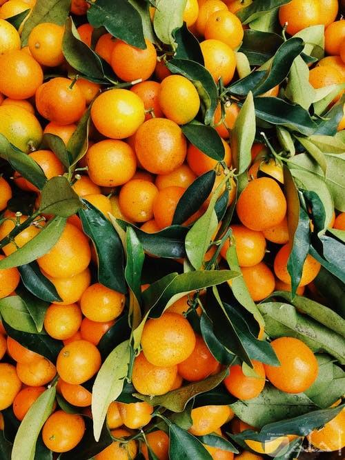 صورة لمجموعه كبيرة من البرتقال