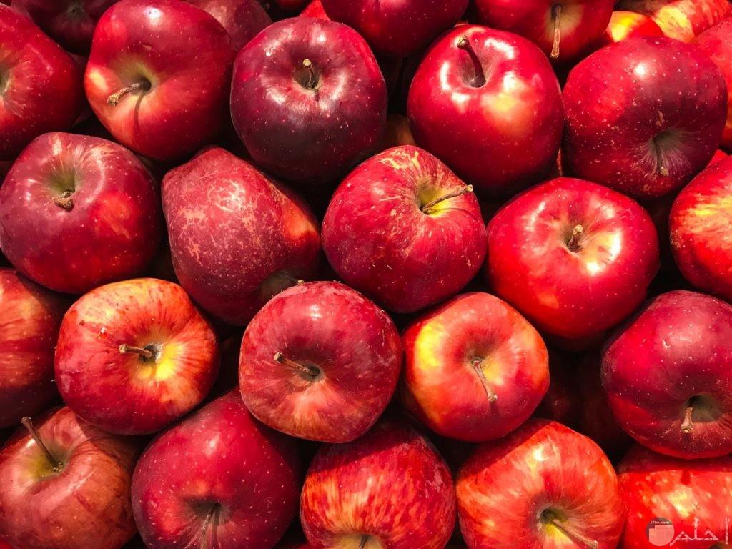 مجموعة من التفاح الأحمر شديد الجمال
