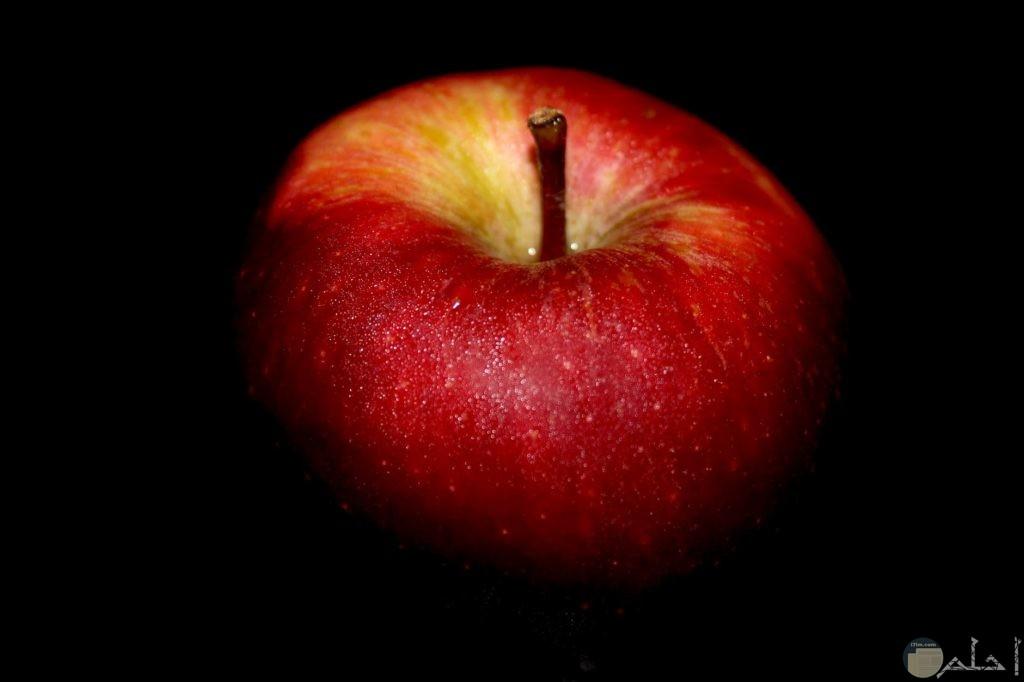 جمال لون التفاح الأحمر مع الخلفية السوداء