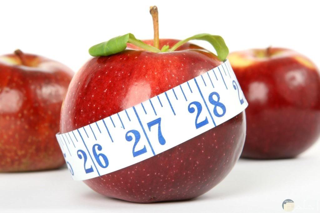 صورة تدل على أن التفاح يساعد على خسارة الوزن
