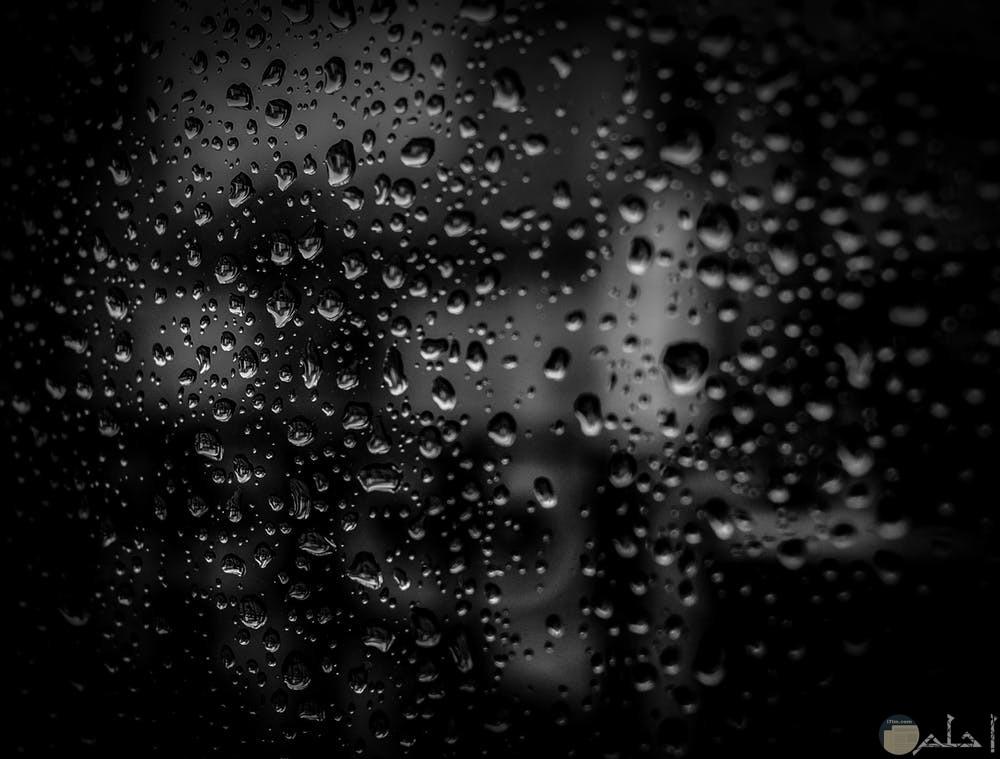 جمال المطر مع خلفية سوداء جميلة
