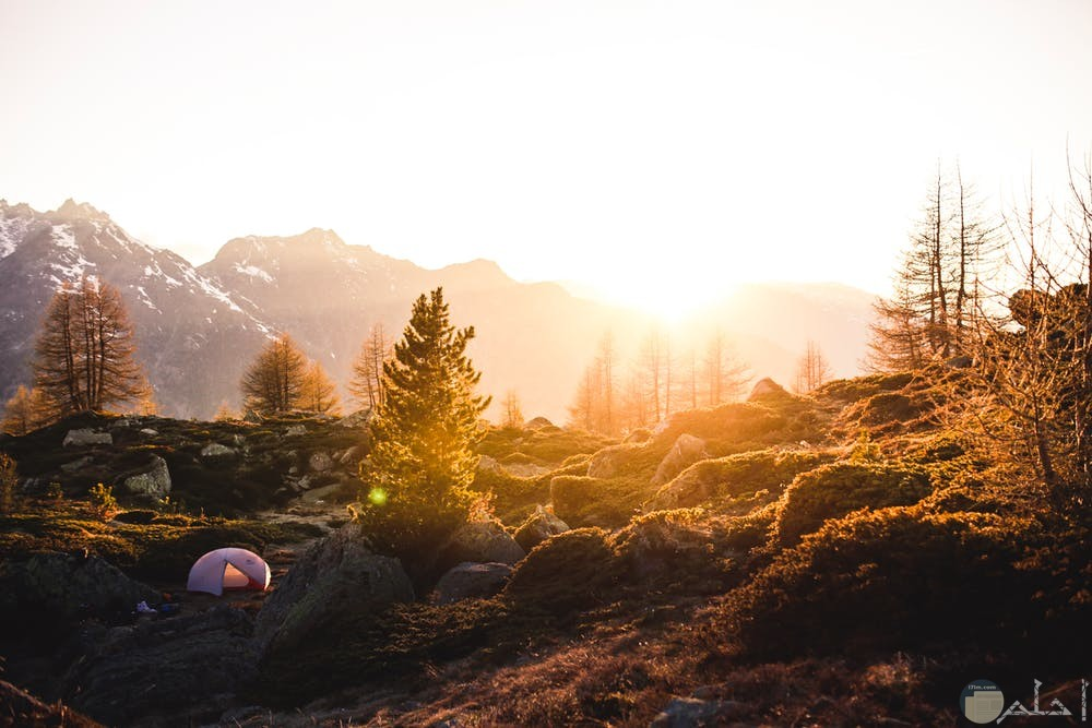 صور هادئة لغروب الشمس