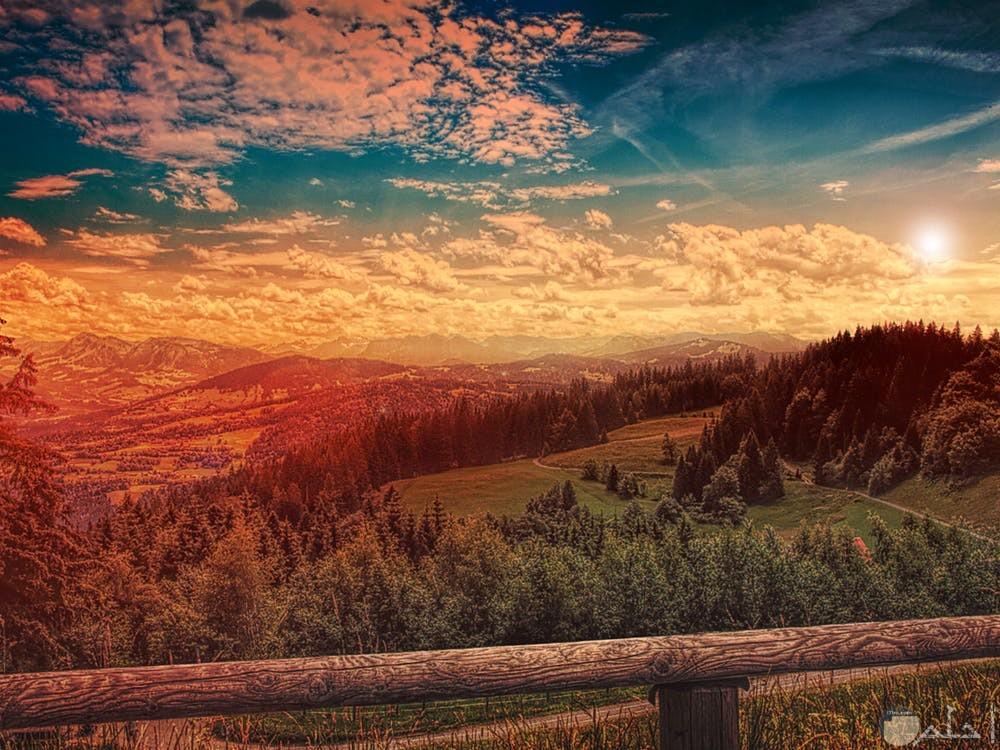 صور غابات مع غروب الشمس