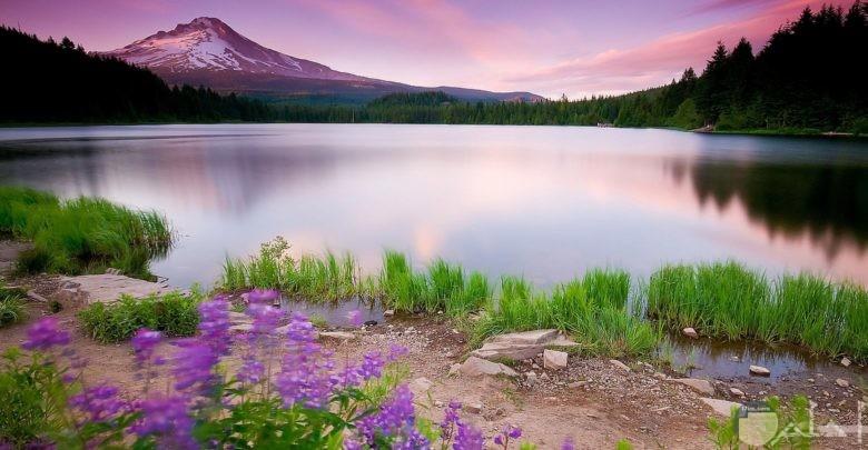 صورة نهر صافي رائع