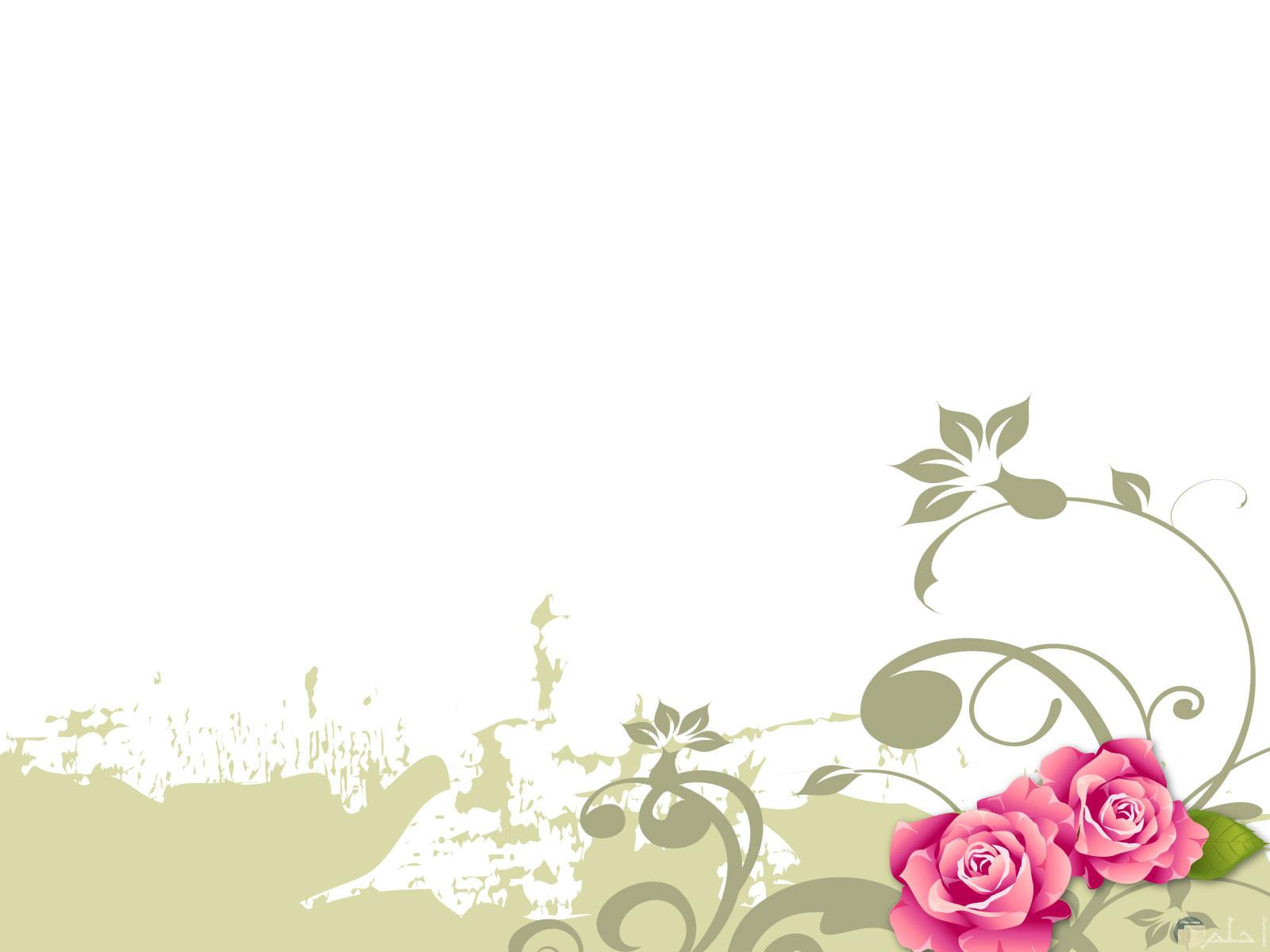 خلفية زهور وردية