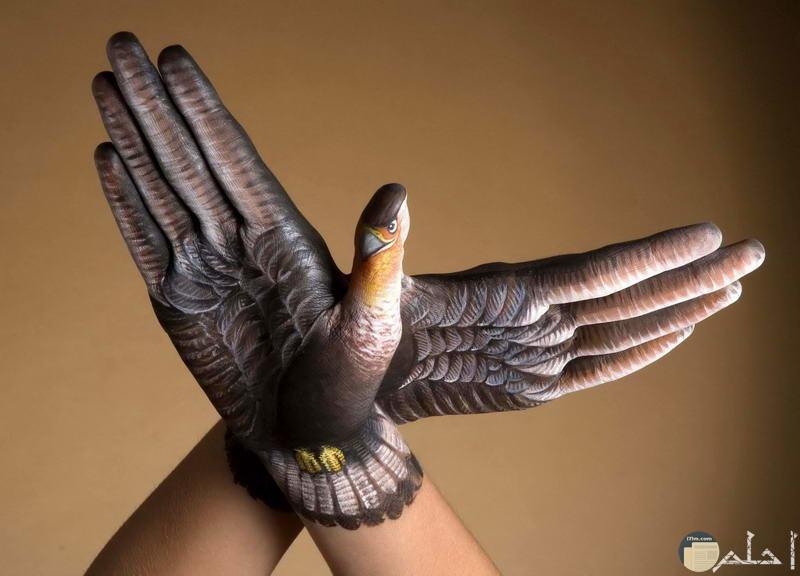رسم النسر على اليدين للفنان جيدو دانيال