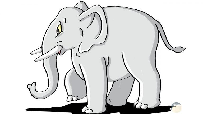 صورة فيل مرسوم