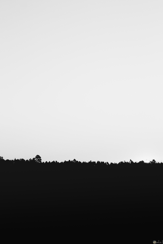 صورة أبيض وأسود مميزة عبارة عن أرض باللون الأسود ونص الصورة الأخر مساحة خالية باللون الأبيض