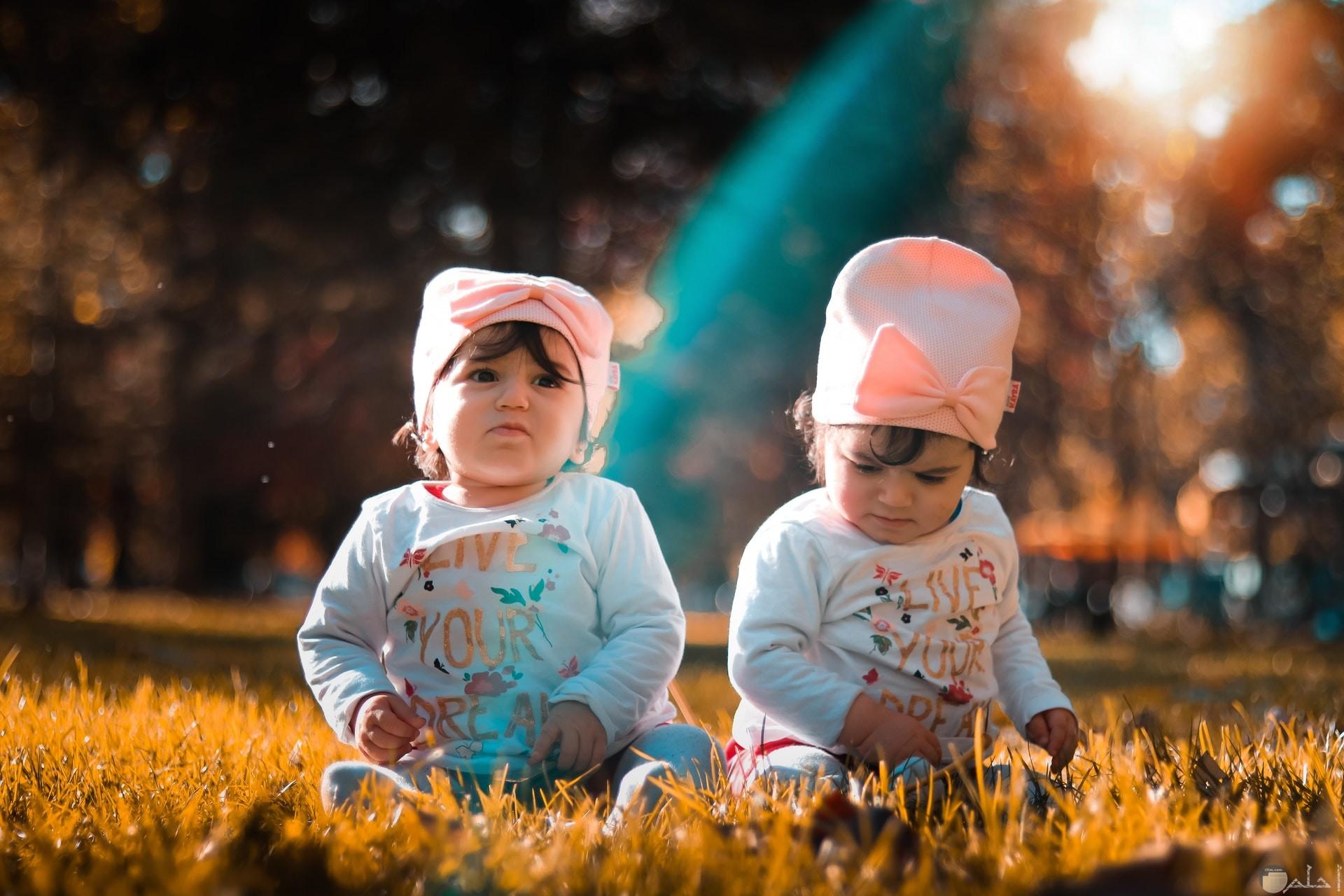 صورة جميلة جدا حول توائم بنات اطفال كيوت جالسين في الحديقة