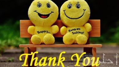 صورة جميلة جدا للتعبير عن الشكر بالإنجليزي مكتوبة باللون الأصفر مع لعبتين علي مقعد