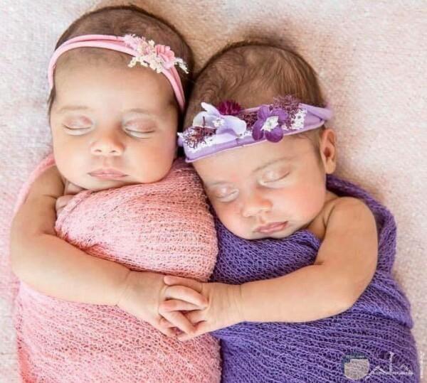 صورة جميلة حول توائم بنات أطفال حلوين جدا