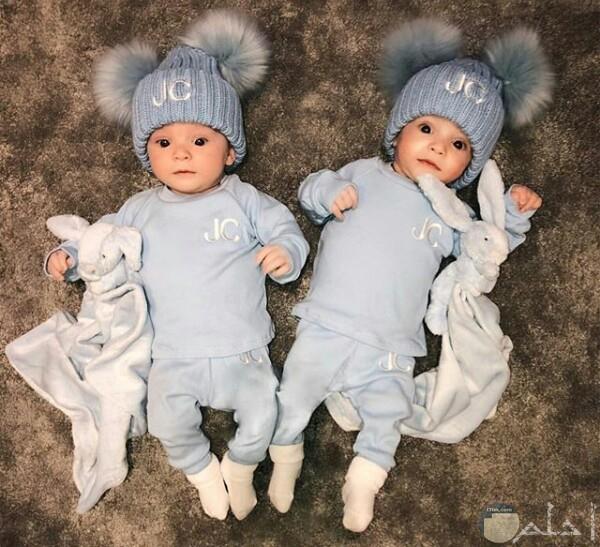 صورة جميلة حول توائم ولاد أطفال لابسين نفس اللبس ومعاهم نفس الدمية