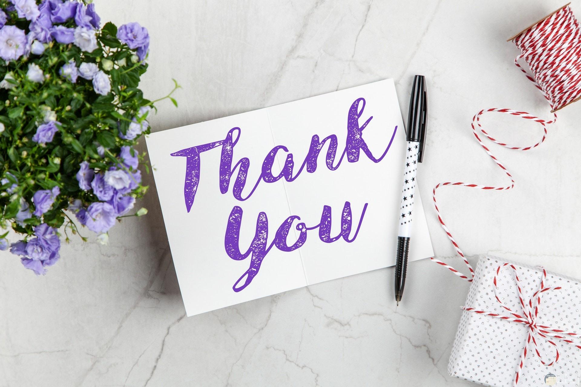 صورة جميلة لشكرا بالإنجليزي للأصدقاء باللون البنفسجي بجانبها قلم وباقة ورد بنفسجية