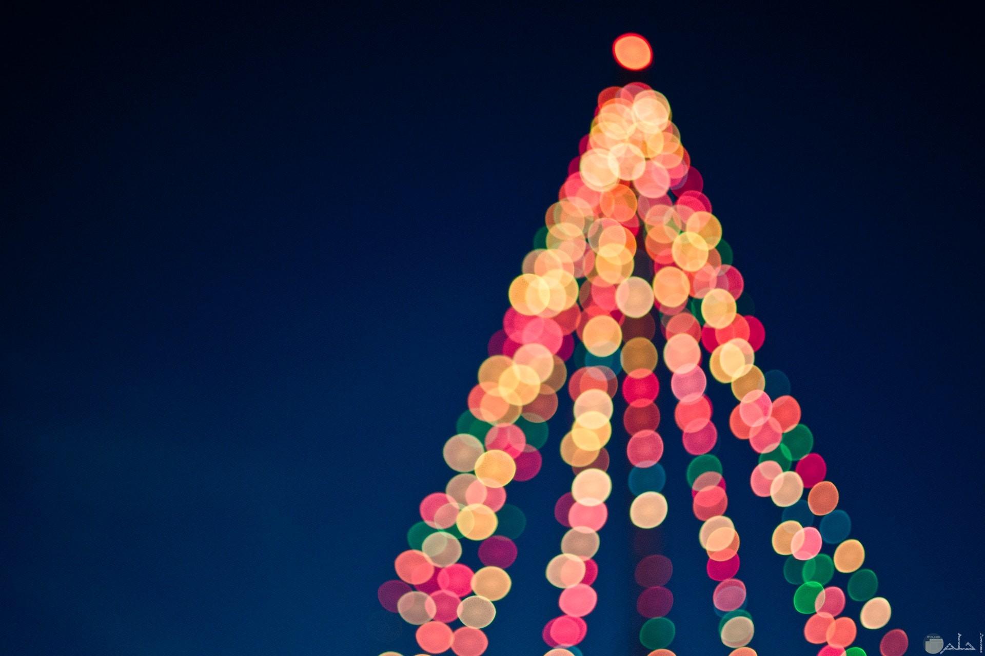 صورة جميلة مزخرفة بأضواء رائعة مختلفة الألوان