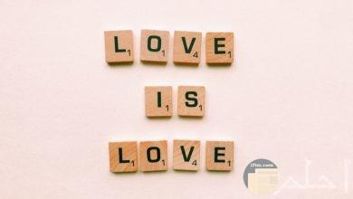 صورة حب مميزة بها جملة الحب هو الحب مع خلفية وردية جميلة