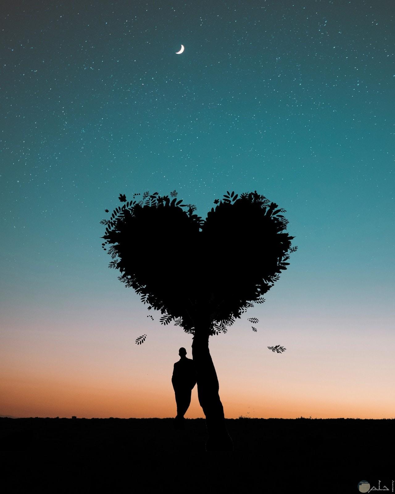صورة رومانسية جميلة لشجرة علي شكل قلب بجانبها رجل