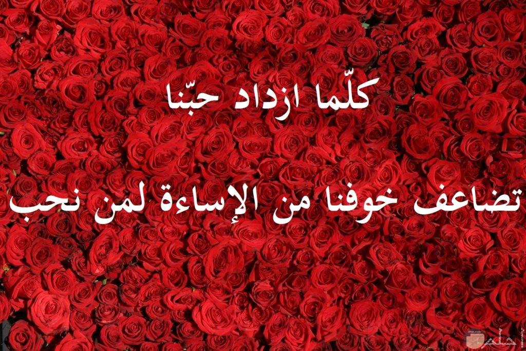 صورة رومانسية جميلة مكتوب عليها كلام حب مع خلفية ورود