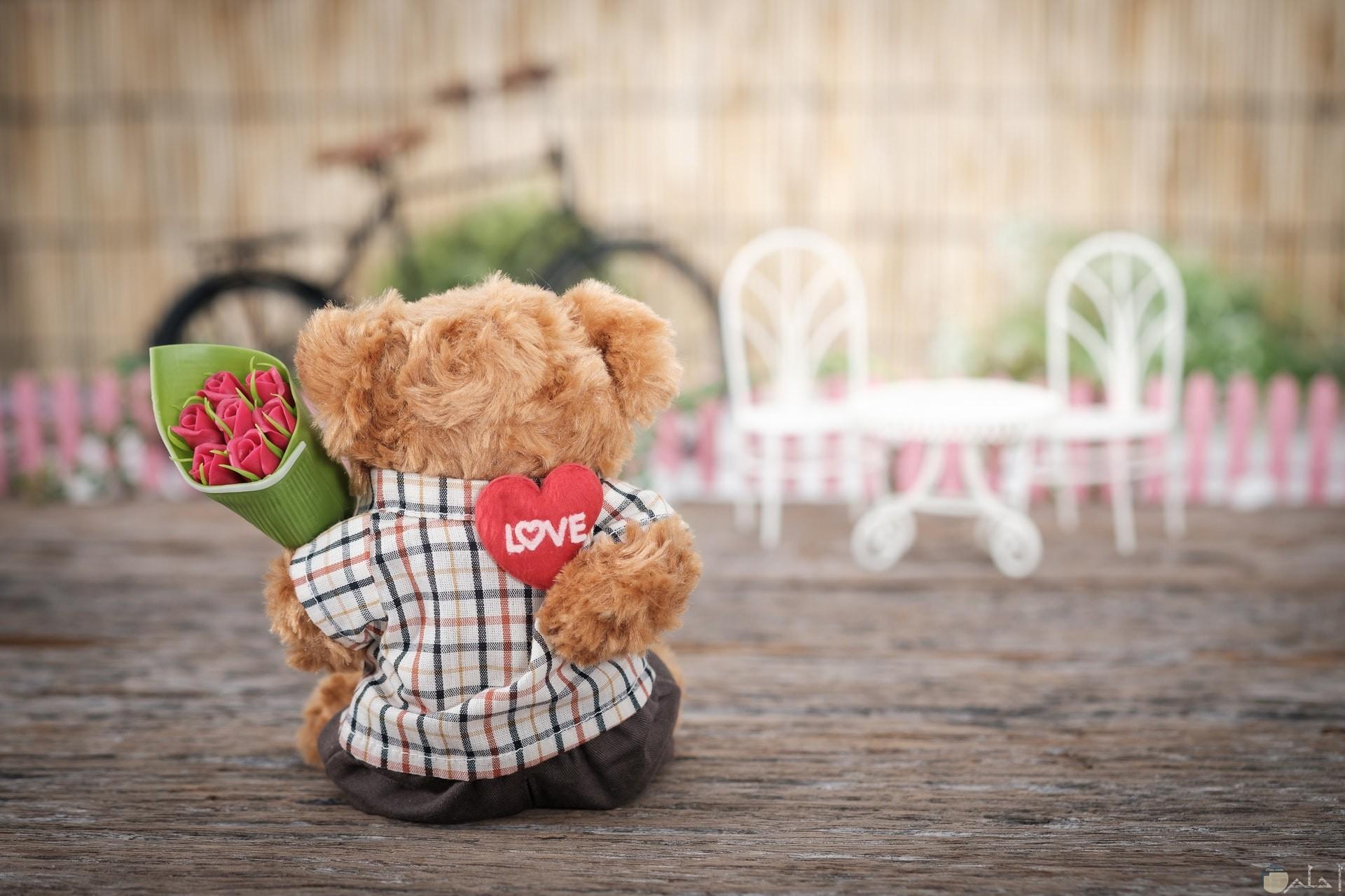 صورة رومانسية لدب يحمل ورود جميلة وقلب وراء ظهره