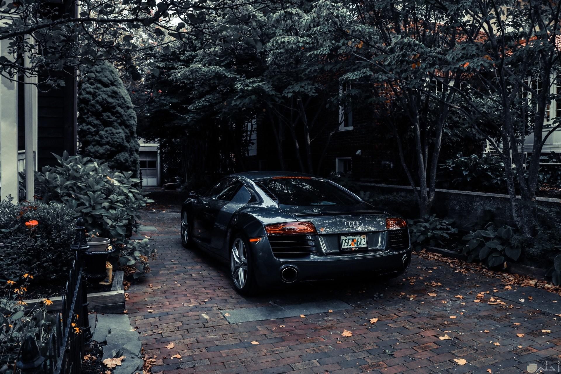 صورة سيارة أودي فخمة جميلة جدا بجوارها أشجار للفيس بوك