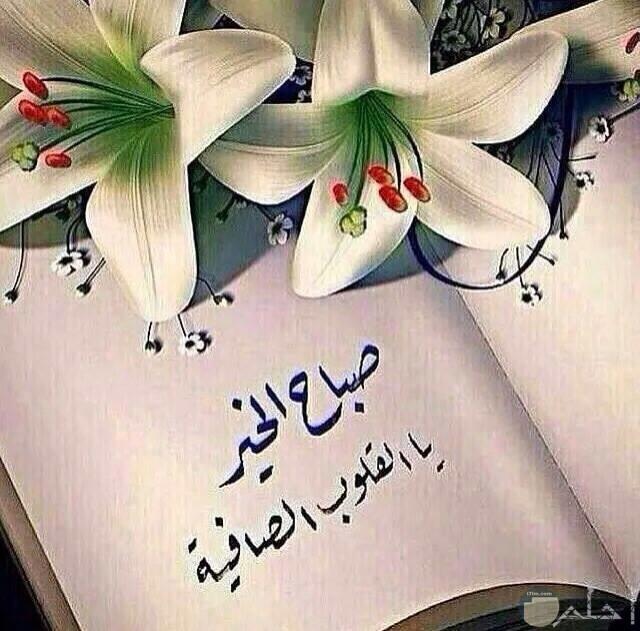 صورة صباح الخير