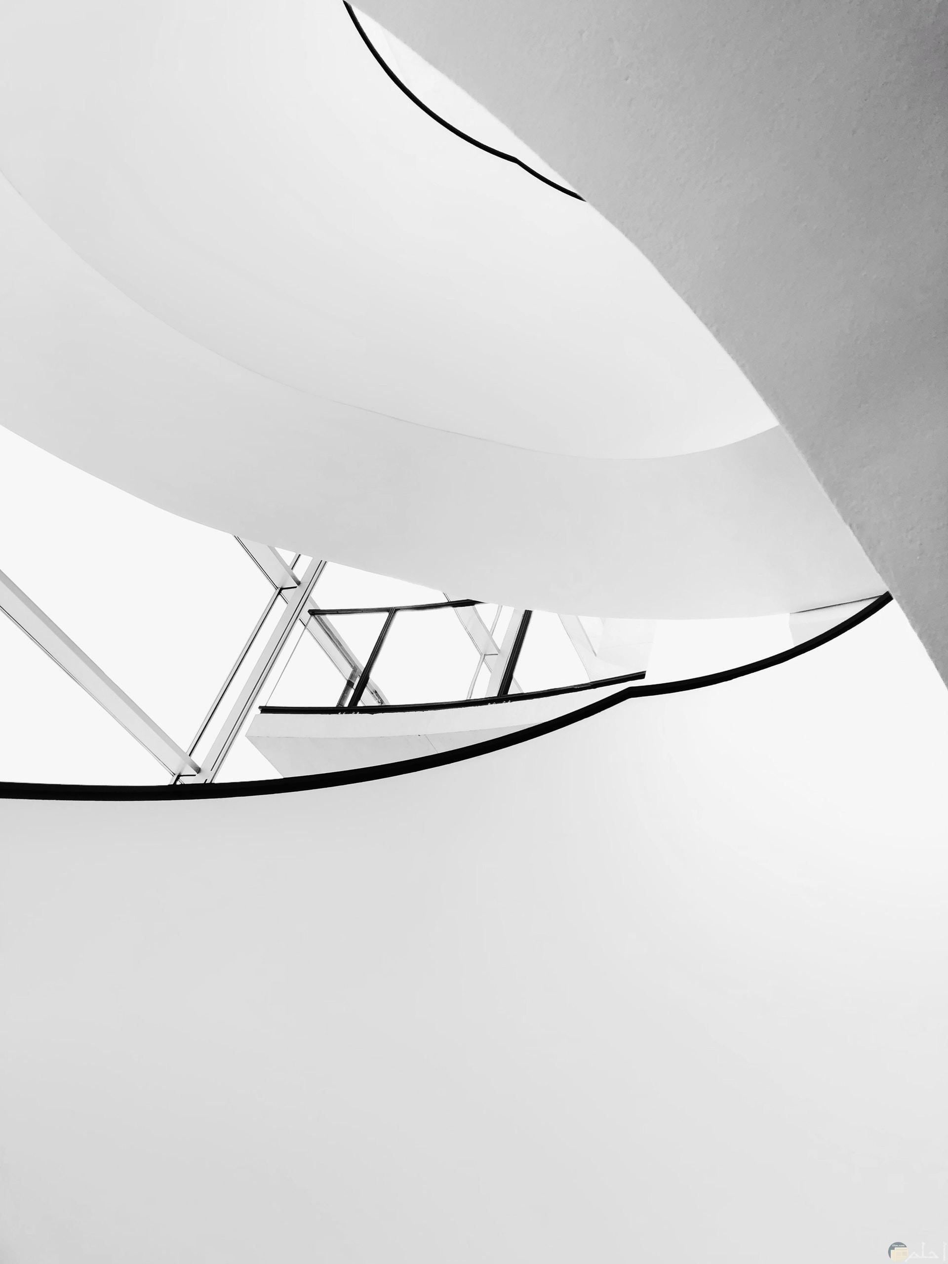 صورة عجيبة جدا لأحد التصاميم باللون الأببض والأسود