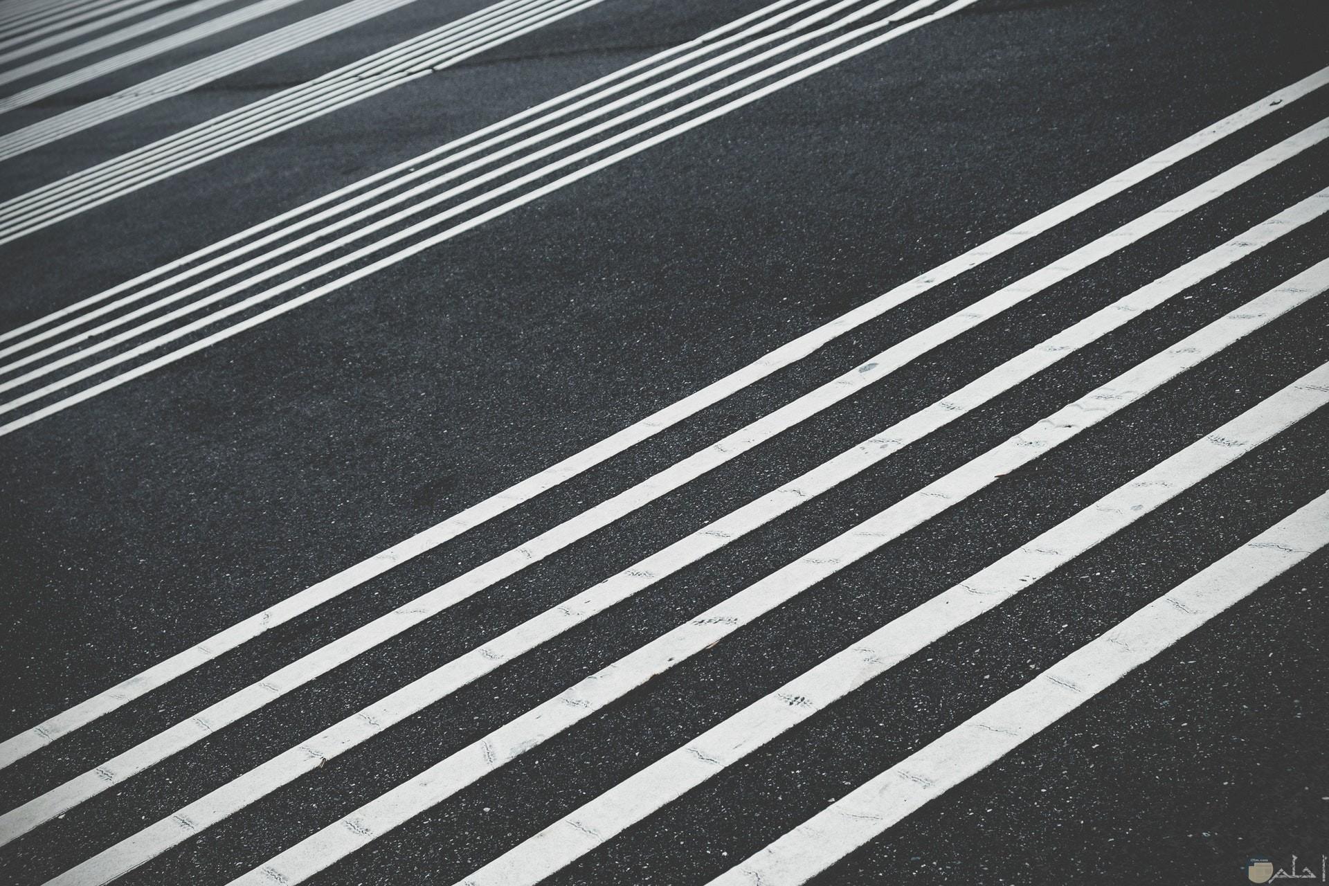 صورة غريبة وجميلة لمجموعة من الخطوط البيضاء علي الطريق